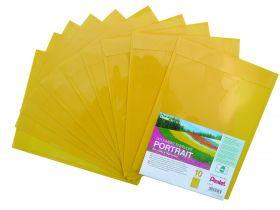 Kileümbrik Recycology plastik A4 kitsas külg suletav kollane/10/500