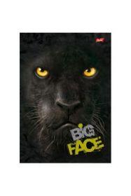 Kaustik A5/96l ruut ''Big Face'' 4 motiivi,70g, kõvad kaaned