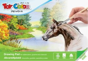 Akvarelliplokk A4 215g (AS15) 15lehte, Toy Color /10