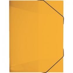 Kartongmapp kummiga A4 ''RVS'' Ananass/10